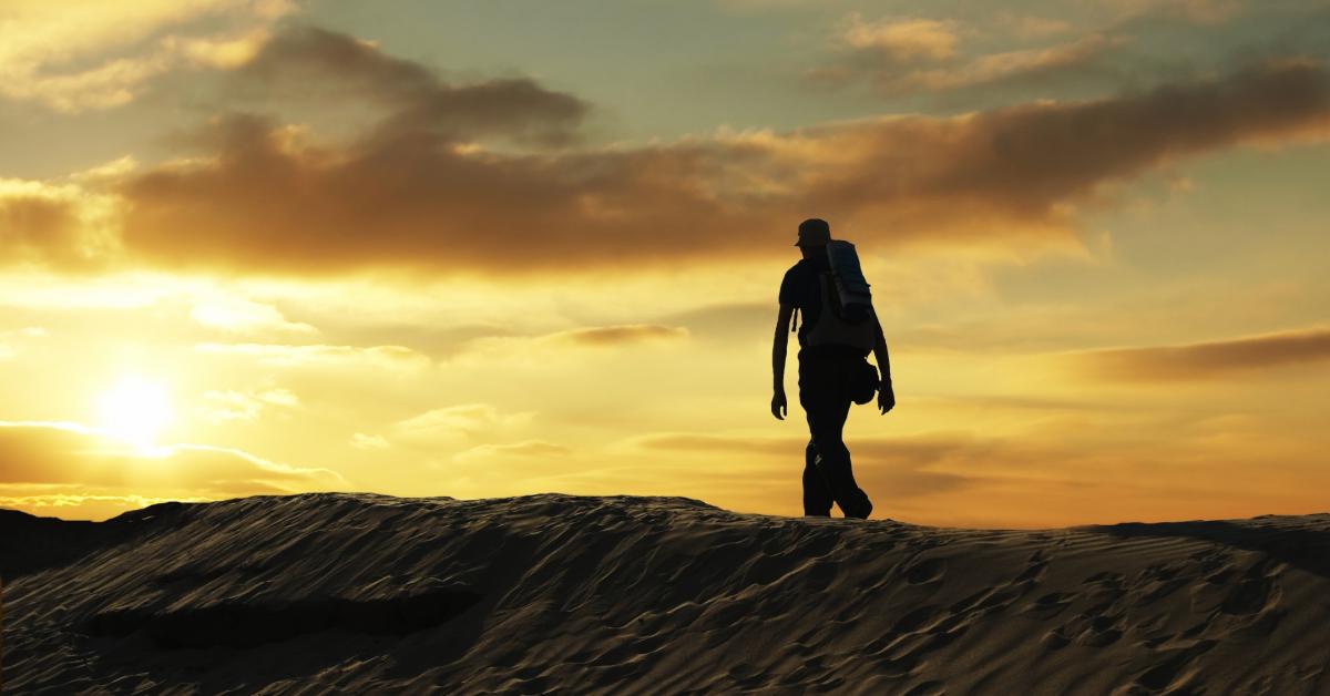 Traveller walks the road.